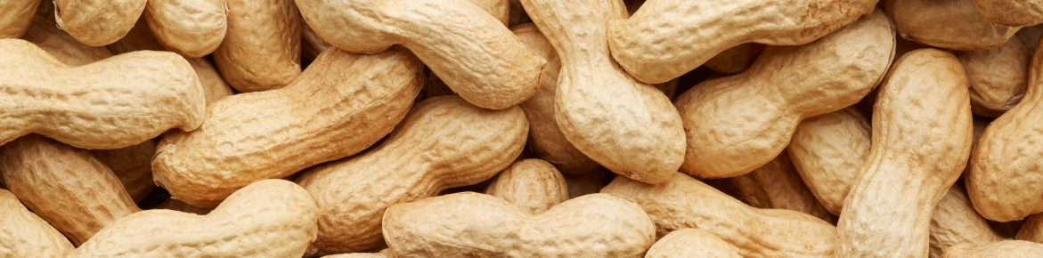 Peanut Oral Immunotherapy product